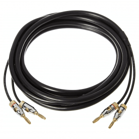 AmazonBasics Speaker Cable with Gold-Plated Banana Tips | FORMYANMAR.COM